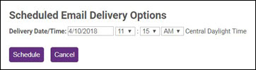 Sched Email Delivery Options.JPG