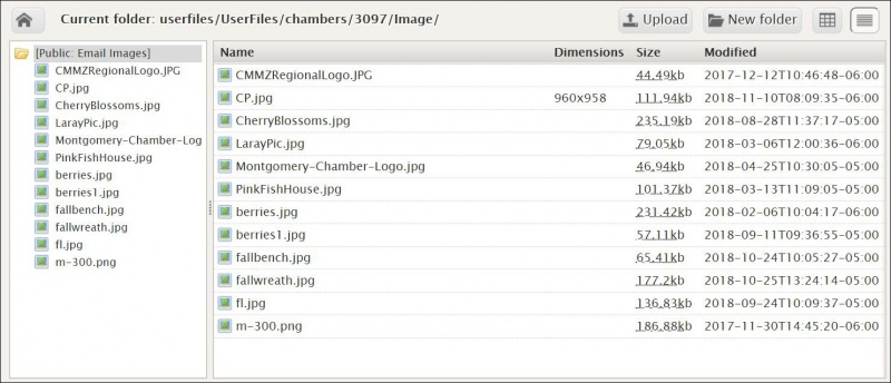 Blog Image Upload.JPG